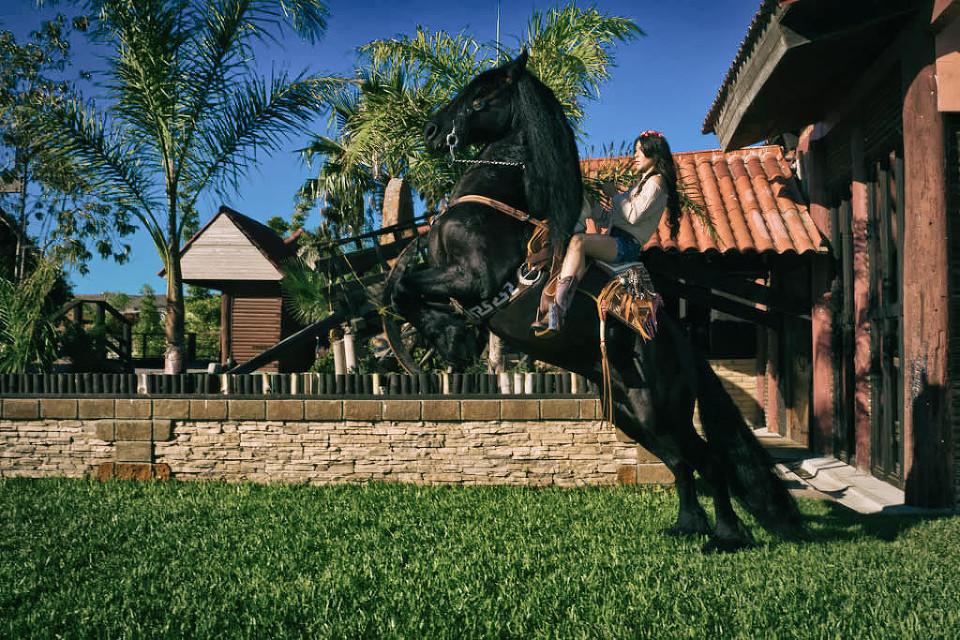 sesion fotografica en hacienda caballo frisian -83