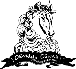 OSWALDO OSUNA ||  WEDDING PHOTOGRAPHER | MEXICO & USA DESTINATION WEDDING PHOTOGRAPHY logo